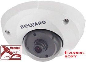 IP камера B1710DM